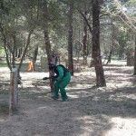 paintball (14)